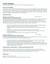 Commercial Real Estate Appraiser Sample Resume Best Real Estate Sales Resume Samples Kenicandlecomfortzone
