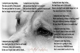 animal rescue quotes and sayings. Exellent And Dog Quote I Adopted Your Dog Today With Animal Rescue Quotes And Sayings