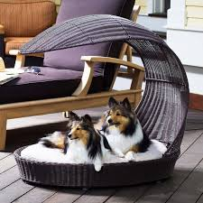 outdoor dog bed and lounger if only tucker would lay down while he s outside