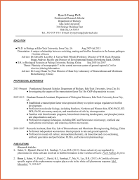 Cv Resume Biography Resume Bio Example Hr Internship Resume