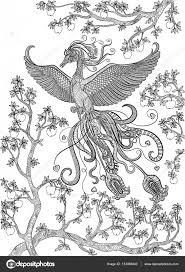 Hand Getrokken Bird Firebird Op Een Tak Appelboom Stockvector