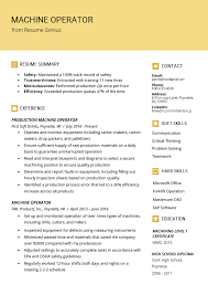 Professional Summary For Resume How To Write Profile