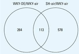 Caucus Vs Primary Venn Diagram One Month Diesel Exhaust Inhalation Produces Hypertensive