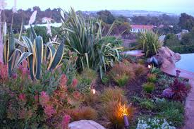 drought tolerant garden. Drought Tolerant Landscape Design Los Angeles | Garden Of Eva