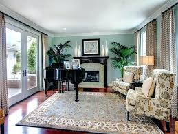 rugs for living room ideas area