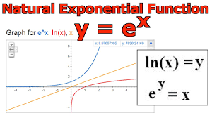 natural exponential function y e x