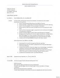 Handyman Description Resume Therpgmovie