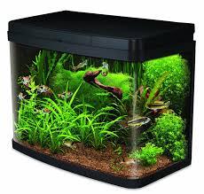 Fish Tank Interpet Insight Glass Aquarium Fish Tank Premium Kit 40 Litre
