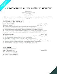 Sales Rep Sample Resume Gorgeous Car Sales Representative Sample Resume Extraordinary Sale Cv