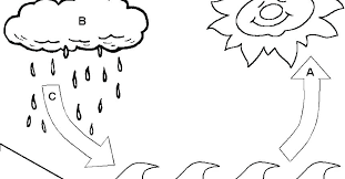 Coloring Pages Of Water Water Cycle Coloring Pages Water Cycle