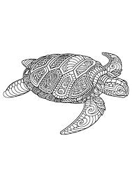 Cute Sea Turtle Coloring Pages Fresh Image Result For Free Mandala