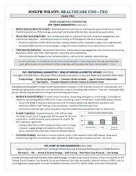 Executive Resume Writers Classy AwardWinning CEO COO Healthcare Resume By Executive Resume Writer