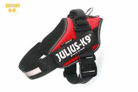 Julius K9 Power Harness Sizing Chart Details About Julius K9 Idc Powerharness Dog Harness Red All Sizes
