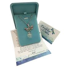 smiling wisdom a dandelion wish for you story dragonfly set dragonfly with real dandelion