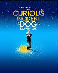 the curious incident of the dog in the nighttime essay quotes the curious incident of the dog in the nighttime essay quotes