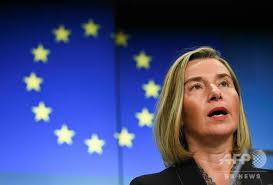 Image result for EU外相