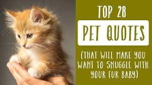 Pet Quotes New Top 48 Quotes About Pets That Will Make You Want To Snuggle With