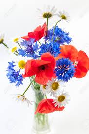 Bouquet De Fleurs Sauvages Coquelicots Marguerites Bleuets