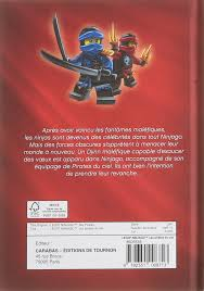 LEGO NINJAGO LES PIRATES DU CIEL (TOURNON LEGO) (French Edition):  9782351008713: Amazon.com: Books