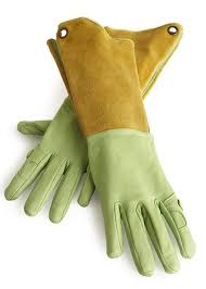 above designed especially for women s hands the pallina glove is made of washable goatskin leather and boar hide kevlar thread stitching and