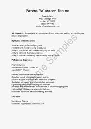 Volunteer Responsibilities Resume Resume For Your Job Application