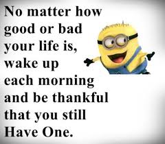 Funny Quotes With Pictures About Life 100 Best Funny Minion Quotes 56