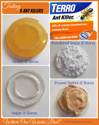 borax for ant control. Fine For I Recently Test Five Ant Killers Find Out Which One Works Best And Borax For Ant Control T