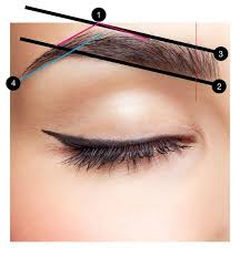 eyebrow shapes. beautiful brow basics: a complete guide to perfect brows eyebrow shapes