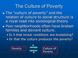durkheim functionalism in sociology the culture of poverty  7 the culture of poverty
