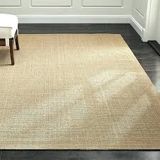 2x4 area rug rug outstanding area rug stunning rugs large rugs and rug regarding area rugs