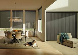 Wood Vertical And Horizontal Blinds In Mountain Top Dallas PADouglas Window Blinds