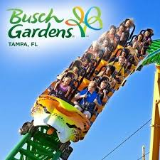 details about busch gardens tampa tickets savings a promo tool