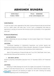 Resume Examples For Accounting Professionals Accounting Director