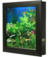wall aquarium aquarium aquarium fish