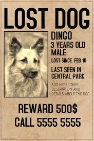 Lost Pet Flyer Maker New 48 Customizable Design Templates For Old PosterMyWall
