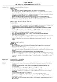 Trade Resume Examples Trade Support Analyst Resume Samples Velvet Jobs 6