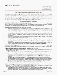 Resume Templates Word 2007 Amazing Microsoft 48 Resume Template Resume Format Examples 48