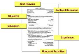 resume for college freshmen anuvrat info Fastweb