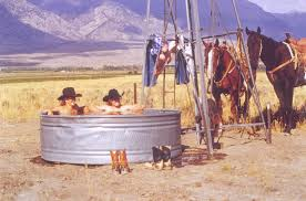 Image result for COWGIRLS AND COWBOYS