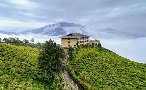File Cherry Resort Inside Temi Tea Garden Namchi Sikkim Jpg
