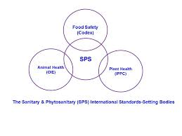 International Food Safety An Overview Of The Sanitary And