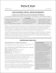 Marvellous Design Executive Resume 1 10 Executive Resume Templates