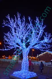 Decorating Outside Tree With Lights Christmas Lights On A Tree Smart Photo Stock