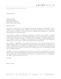 Free Cover Letter For Marketing Executive Position Free Template