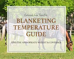 Weather Or Not A No Nonsense Guide To Blanketing