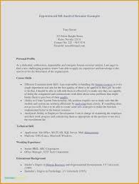 Professional Background Resume Examples Resume Outline Free Awesome