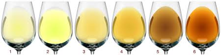 Identify The Wine In Your Glass Based On Color Wine Sign