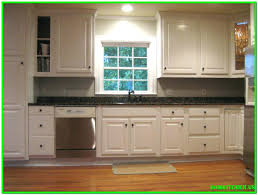 Contractor Kitchen Cabinets Enchanting Kitchen Cabinet Contractor Cabinets Contractors Reface Pororoonline