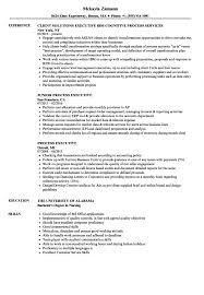 Process Executive Resume Samples Velvet Jobs It Director S Sevte