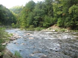 Loyalsock Creek Hatch Chart 2018 Pennsylvania River Of The Year Heres A Tour Of